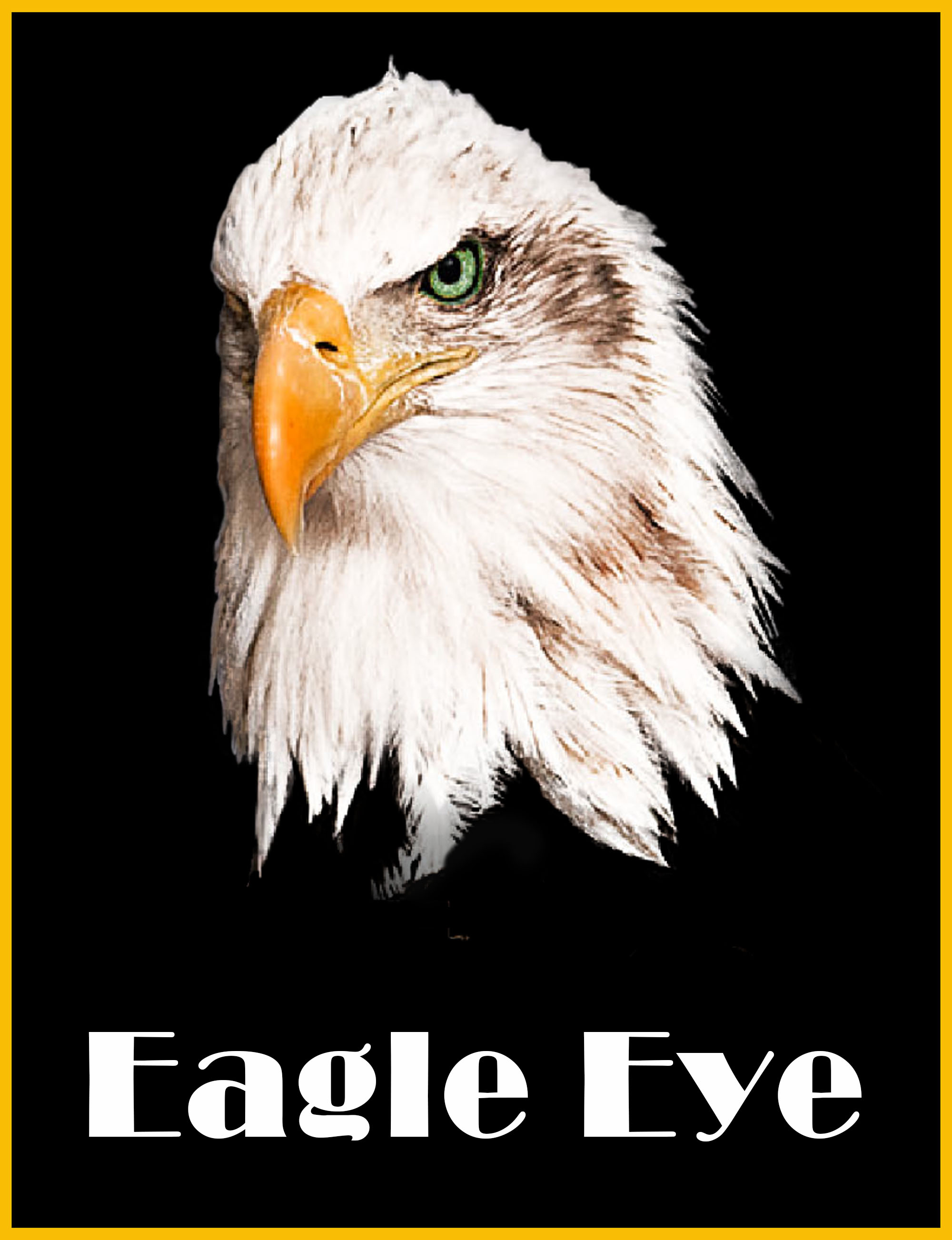 zz Eagle Eye Redesign